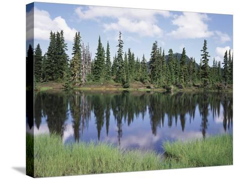 Vancouver Island, Strathcona Provincial Park, Reflecting in a Tarn-Christopher Talbot Frank-Stretched Canvas Print