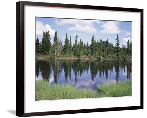 Vancouver Island, Strathcona Provincial Park, Reflecting in a Tarn-Christopher Talbot Frank-Framed Art Print