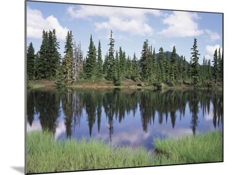Vancouver Island, Strathcona Provincial Park, Reflecting in a Tarn-Christopher Talbot Frank-Mounted Photographic Print