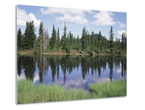 Vancouver Island, Strathcona Provincial Park, Reflecting in a Tarn-Christopher Talbot Frank-Metal Print