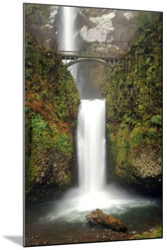 Multnomah Falls and Creek, Multnomah Falls Sp, Columbia Gorge, Oregon-Michel Hersen-Mounted Photographic Print