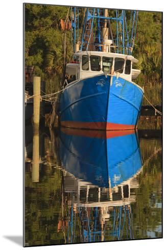 USA, Florida, Apalachicola, Shrimp Boat Docked at Apalachicola-Joanne Wells-Mounted Photographic Print
