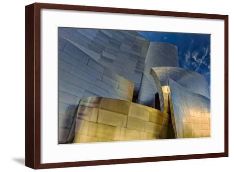 Los Angeles, California. the Disney Concert Hall Exterior-Rona Schwarz-Framed Art Print