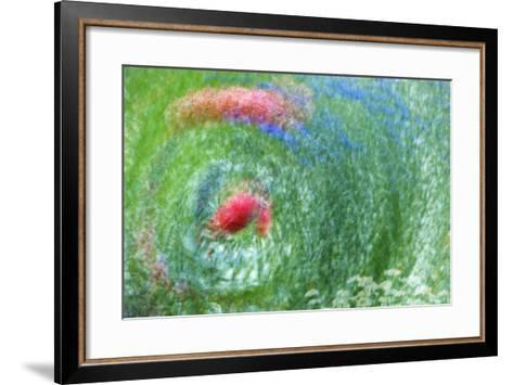 USA, Washington, Whidbey Island. Montage of Flowers and Greenery-Jaynes Gallery-Framed Art Print