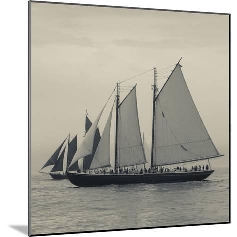 Massachusetts, Schooner Festival, Schooners in Gloucester Harbor-Walter Bibikow-Mounted Photographic Print