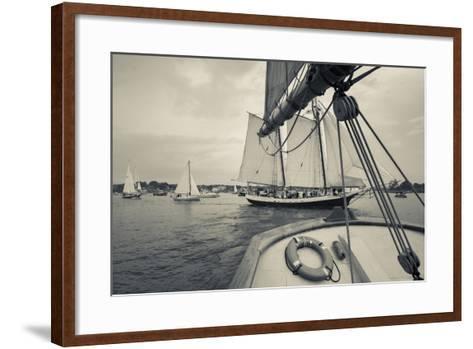 Massachusetts, Schooner Festival, Schooners in Gloucester Harbor-Walter Bibikow-Framed Art Print