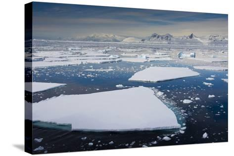 South Antarctic Circle, Near Adelaide Island. the Gullet. Ice Floes-Inger Hogstrom-Stretched Canvas Print