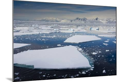 South Antarctic Circle, Near Adelaide Island. the Gullet. Ice Floes-Inger Hogstrom-Mounted Photographic Print