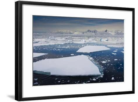 South Antarctic Circle, Near Adelaide Island. the Gullet. Ice Floes-Inger Hogstrom-Framed Art Print
