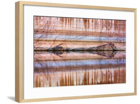 Utah, Glen Canyon Nra. Abstract Reflection of Stained Sandstone Wall-Jaynes Gallery-Framed Art Print