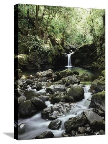 Hawaii, Maui, a Waterfall Flows into Blue Pool from the Rainforest-Christopher Talbot Frank-Stretched Canvas Print