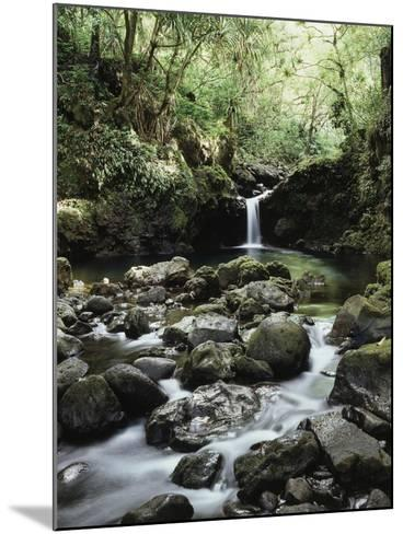 Hawaii, Maui, a Waterfall Flows into Blue Pool from the Rainforest-Christopher Talbot Frank-Mounted Photographic Print