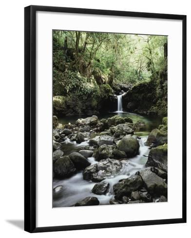 Hawaii, Maui, a Waterfall Flows into Blue Pool from the Rainforest-Christopher Talbot Frank-Framed Art Print
