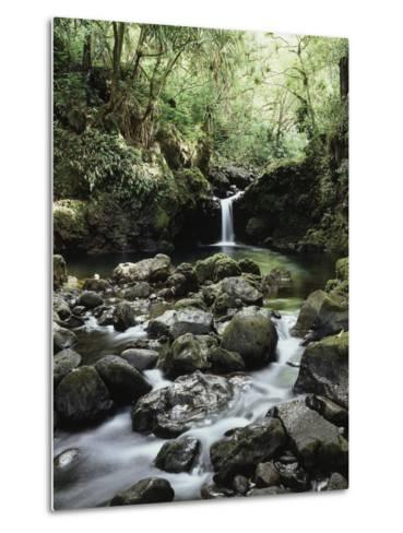 Hawaii, Maui, a Waterfall Flows into Blue Pool from the Rainforest-Christopher Talbot Frank-Metal Print