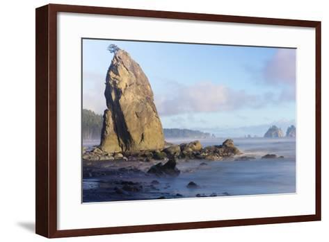 Wa, Olympic National Park, Rialto Beach, Seastack-Jamie And Judy Wild-Framed Art Print