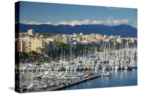 Boats Crowd the Marina in Palma De Mallorca, Mallorca, Spain-Brian Jannsen-Stretched Canvas Print