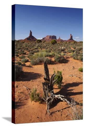 Navajo Nation, Monument Valley, Landscape of Mitten Rock Formations-David Wall-Stretched Canvas Print