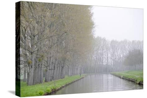 France, Burgundy, Nievre. Spring Along the Nivernais Canal-Kevin Oke-Stretched Canvas Print