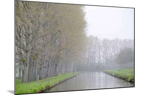 France, Burgundy, Nievre. Spring Along the Nivernais Canal-Kevin Oke-Mounted Photographic Print