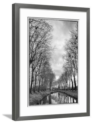 France, Burgundy, Nievre. Trees with Bird Nests on the Nivernais Canal-Kevin Oke-Framed Art Print