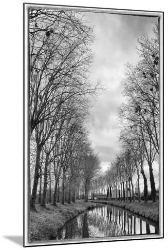 France, Burgundy, Nievre. Trees with Bird Nests on the Nivernais Canal-Kevin Oke-Mounted Photographic Print