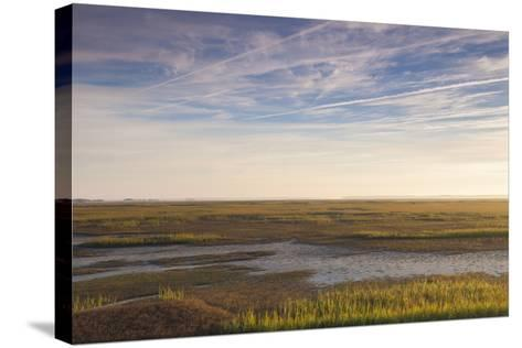 Georgia, Brunswick, Dawn View Along the Brunswick River Marshes-Walter Bibikow-Stretched Canvas Print