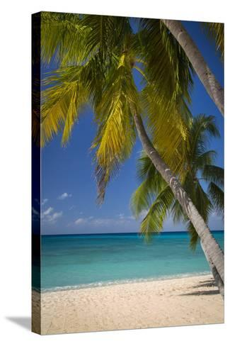 Seven Mile Beach, Grand Cayman, Cayman Islands, West Indies-Brian Jannsen-Stretched Canvas Print