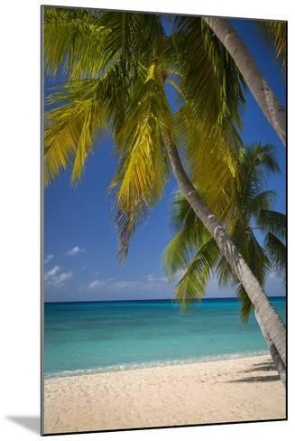 Seven Mile Beach, Grand Cayman, Cayman Islands, West Indies-Brian Jannsen-Mounted Photographic Print