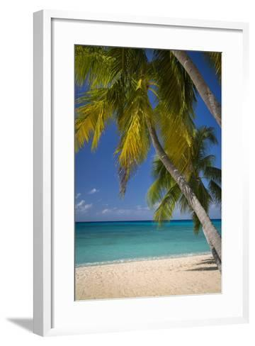 Seven Mile Beach, Grand Cayman, Cayman Islands, West Indies-Brian Jannsen-Framed Art Print