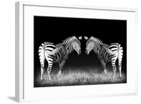 Black and White Mirrored Zebras-Sheila Haddad-Framed Art Print