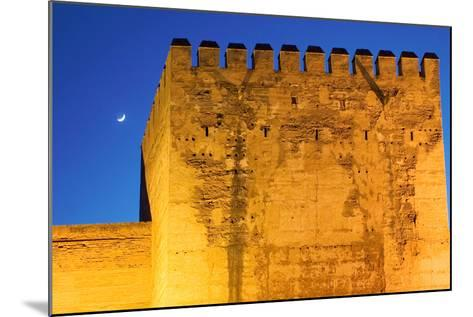Torre De La Vela, Alcazaba, La Alhambra, Granada, Spain-Susan Degginger-Mounted Photographic Print