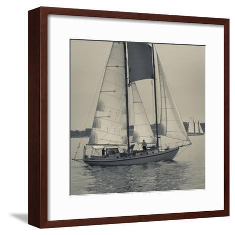 Massachusetts, Gloucester, Schooner Festival, Sail Boats-Walter Bibikow-Framed Art Print