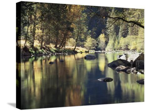 California, Sierra Nevada, Yosemite National Park, Autumn Along the Merced River-Christopher Talbot Frank-Stretched Canvas Print