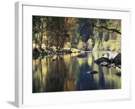 California, Sierra Nevada, Yosemite National Park, Autumn Along the Merced River-Christopher Talbot Frank-Framed Art Print