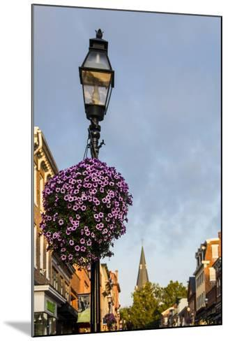 Colonial Architecture in Historic Annapolis, Maryland-Jerry Ginsberg-Mounted Photographic Print