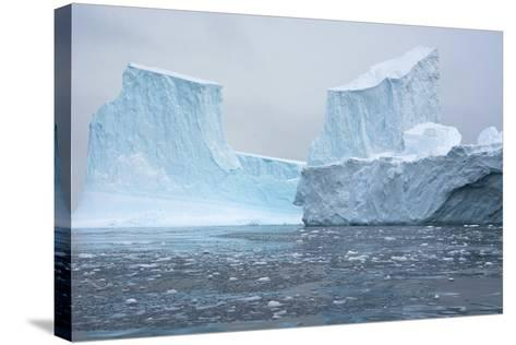 Antarctica. Charlotte Bay. Brash Ice and Icebergs-Inger Hogstrom-Stretched Canvas Print