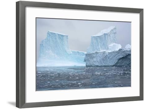 Antarctica. Charlotte Bay. Brash Ice and Icebergs-Inger Hogstrom-Framed Art Print