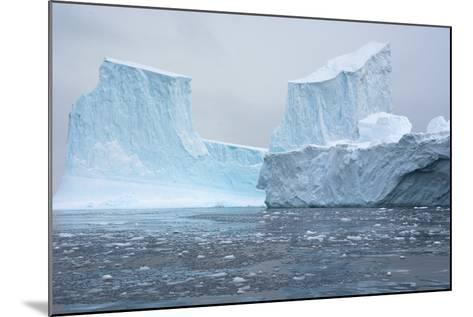 Antarctica. Charlotte Bay. Brash Ice and Icebergs-Inger Hogstrom-Mounted Photographic Print