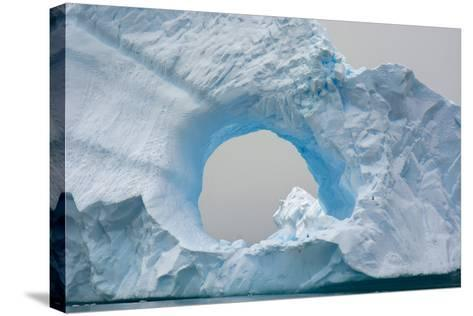 Antarctica. Charlotte Bay. Giant Iceberg with a Hole-Inger Hogstrom-Stretched Canvas Print
