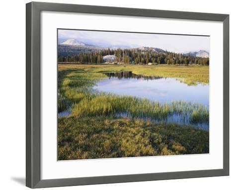 California, Sierra Nevada, Yosemite National Park, the Tuolumne River Lake-Christopher Talbot Frank-Framed Art Print