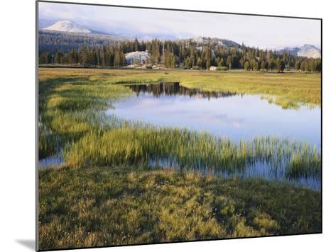 California, Sierra Nevada, Yosemite National Park, the Tuolumne River Lake-Christopher Talbot Frank-Mounted Photographic Print