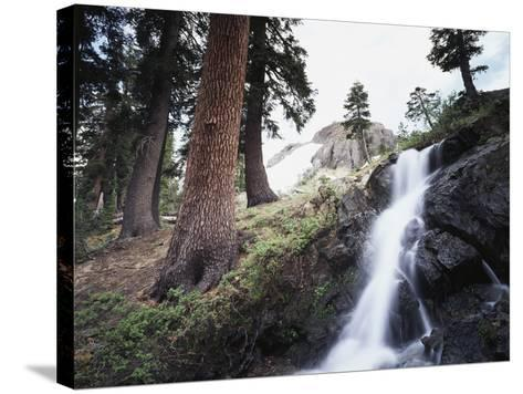 California, Sierra Nevada, Yosemite National Park, Waterfall from the Forest-Christopher Talbot Frank-Stretched Canvas Print