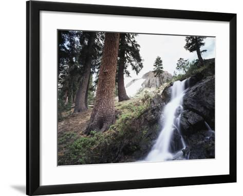 California, Sierra Nevada, Yosemite National Park, Waterfall from the Forest-Christopher Talbot Frank-Framed Art Print