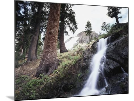 California, Sierra Nevada, Yosemite National Park, Waterfall from the Forest-Christopher Talbot Frank-Mounted Photographic Print