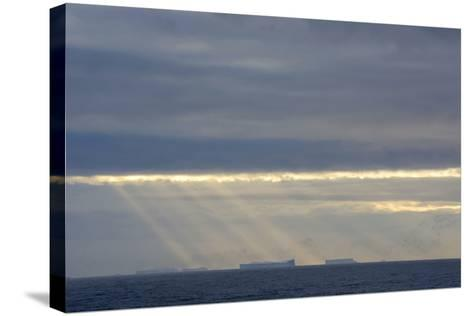Antarctica. Crepuscular Rays Shining Down onto Tabular Icebergs-Inger Hogstrom-Stretched Canvas Print