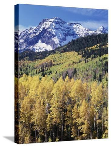 Colorado, Rocky Mts, Aspen Trees Below a Mountain Peak in Fall-Christopher Talbot Frank-Stretched Canvas Print