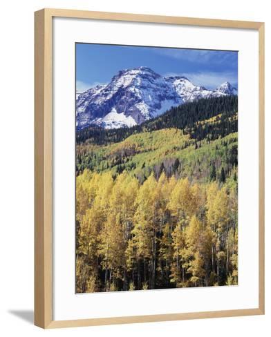 Colorado, Rocky Mts, Aspen Trees Below a Mountain Peak in Fall-Christopher Talbot Frank-Framed Art Print