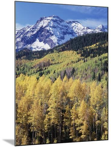 Colorado, Rocky Mts, Aspen Trees Below a Mountain Peak in Fall-Christopher Talbot Frank-Mounted Photographic Print