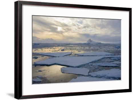 Antarctica. Near Adelaide Island. the Gullet. Ice Floes and Brash Ice-Inger Hogstrom-Framed Art Print