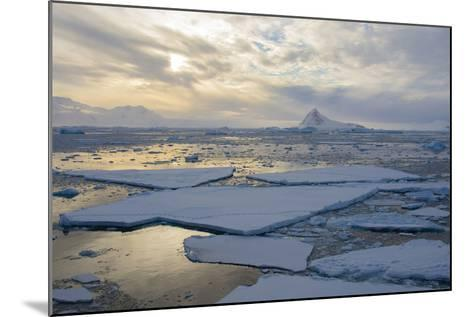 Antarctica. Near Adelaide Island. the Gullet. Ice Floes and Brash Ice-Inger Hogstrom-Mounted Photographic Print